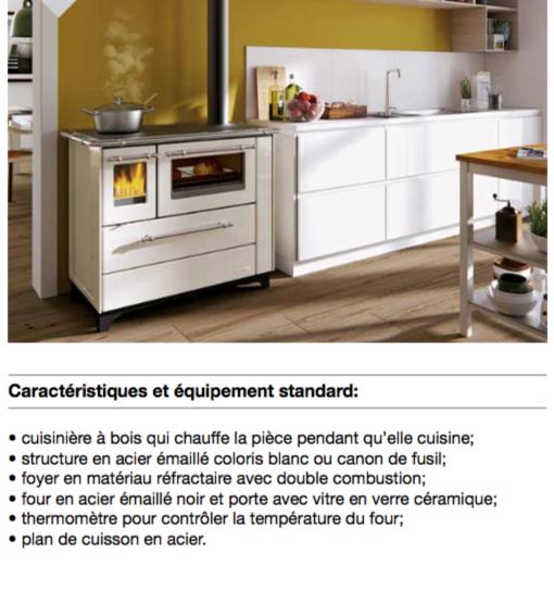 Cuisinière à bois palazzetti